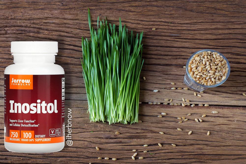 You are currently viewing Мио инозитол и все полезные свойства – инструкция по приему