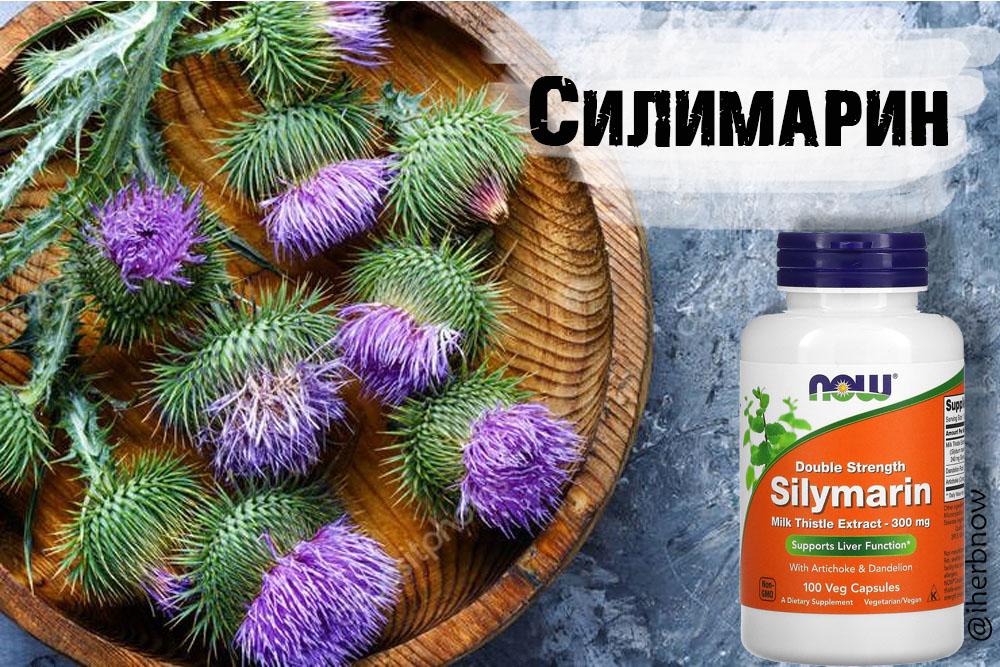 You are currently viewing Силимарин и польза для печени — какой выбрать и как пить